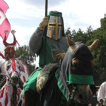reiten altes pferd
